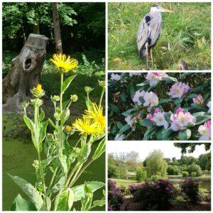 AFLYST: Meditationstur i Bernstorffsparken